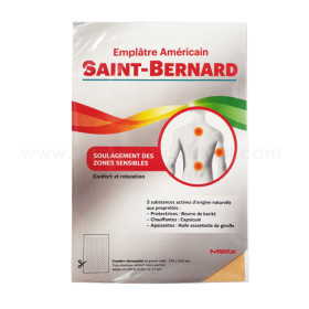 SAINT BERNARD PARCHE AMERICANO
